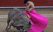 Cenicientos presenta su Feria del Toro 2013